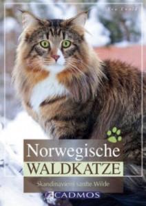 norwegische-waldkatzenjpg